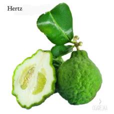 Ароматизатор Бергамот [Hertz & Selck]