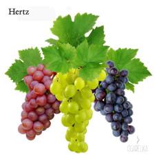 Ароматизатор Виноград [Hertz & Selck]