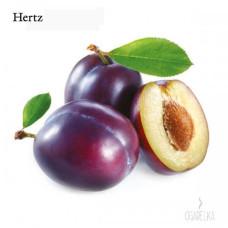 Ароматизатор Слива [Hertz & Selck]